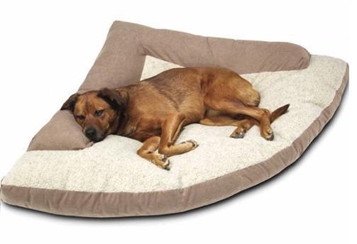Cool Water Beds For Dogs waterbed pets dogs cats